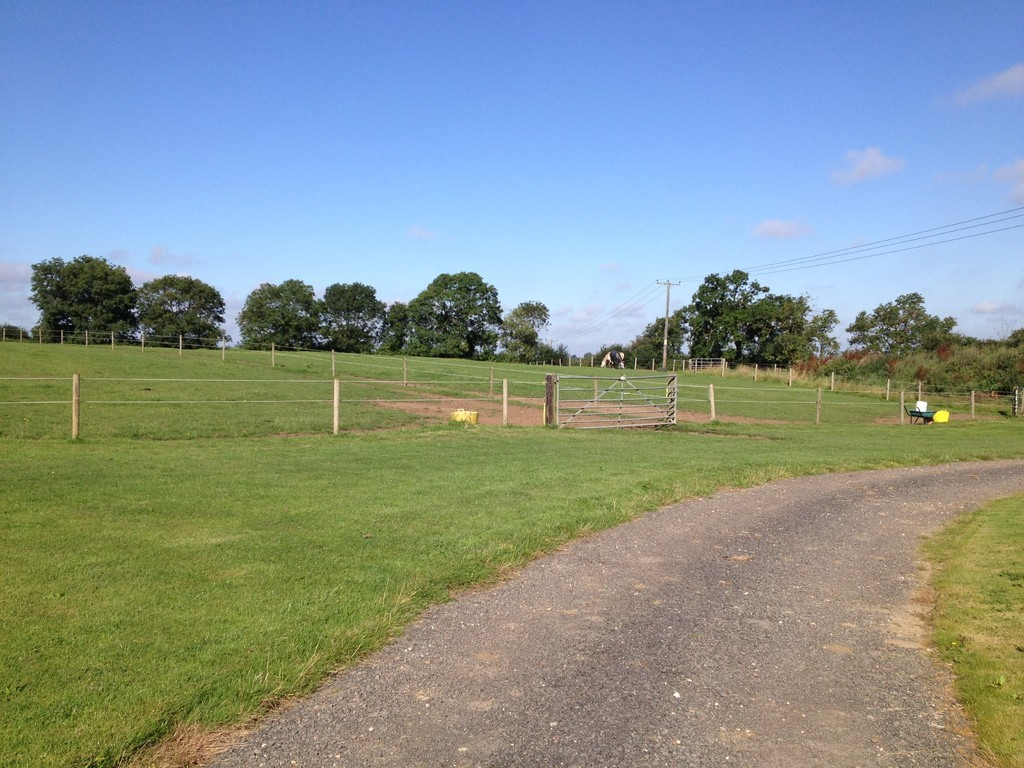 The meadows equestrian facilities for The meado